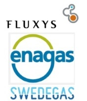 Enagas closes the sale of its stake in Swedegas