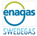 Swedegas, 50% owned by Enagas, begins construction on infrastructure to supply ships with LNG